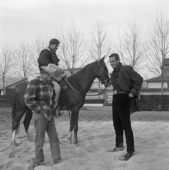 Pasture「At The Riding School」:写真・画像(7)[壁紙.com]