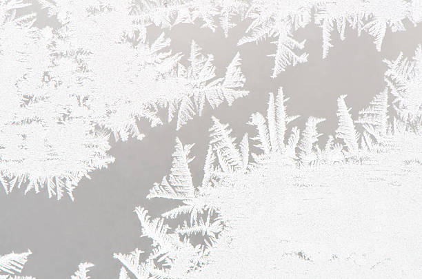 Abstract white ice flower background:スマホ壁紙(壁紙.com)