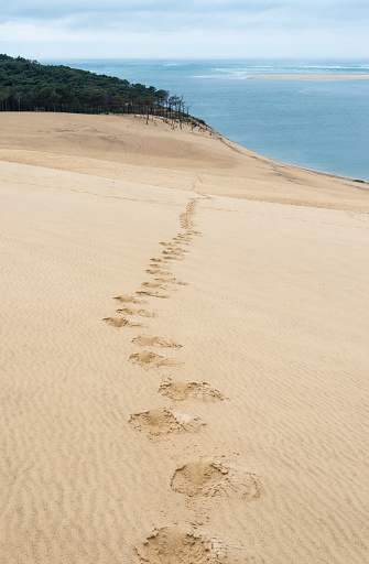 Nouvelle-Aquitaine「France, Aquitaine, Gironde, Pyla sur Mer, Dune du Pilat, track of footprints in the sand」:スマホ壁紙(0)
