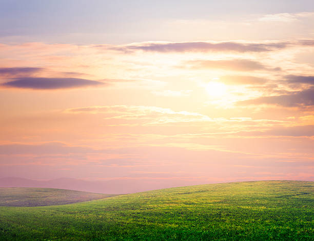 Hilly meadow:スマホ壁紙(壁紙.com)