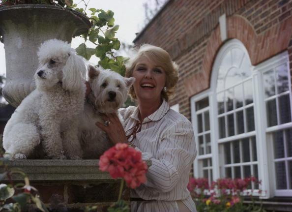 Pet Owner「Katie Boyle」:写真・画像(13)[壁紙.com]