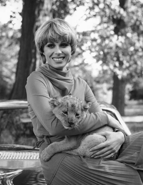 Lion Cub「Joanna Lumley」:写真・画像(10)[壁紙.com]