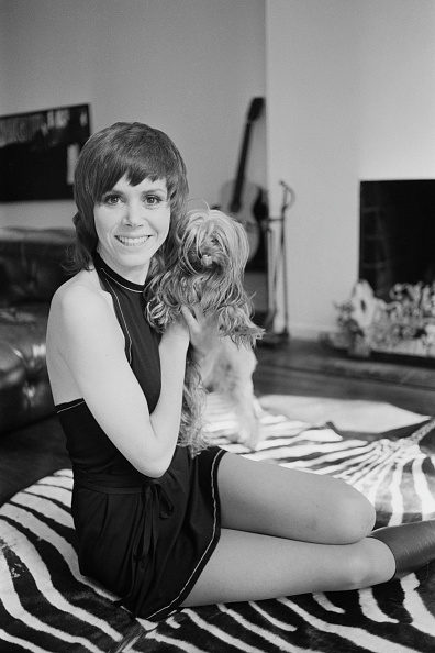 Rug「Judy Carne」:写真・画像(8)[壁紙.com]