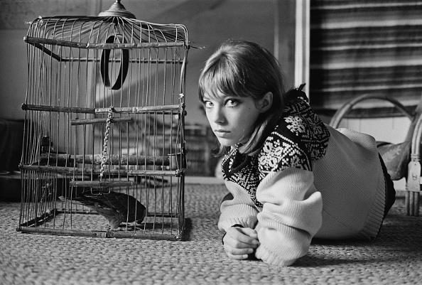 女性歌手「Jane Birkin」:写真・画像(4)[壁紙.com]