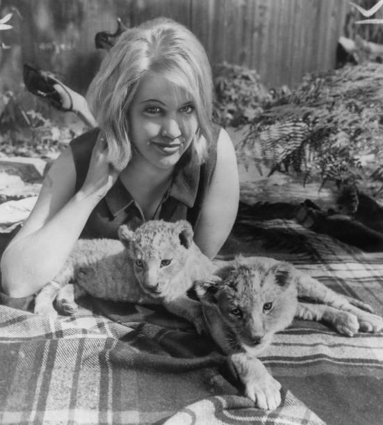 Lion Cub「Olivia Hamnett」:写真・画像(4)[壁紙.com]