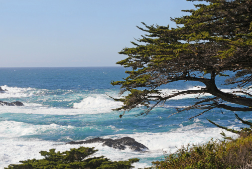 Big Sur「Pacific Ocean from Point Lobos, California」:スマホ壁紙(13)