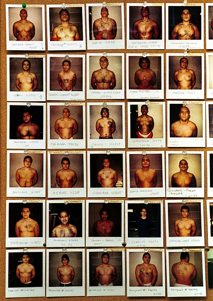 Arizona「Polaroid Photographs Of Members Of The Border Brothers Prison Gang At The Arizona State Prison Compl」:写真・画像(3)[壁紙.com]
