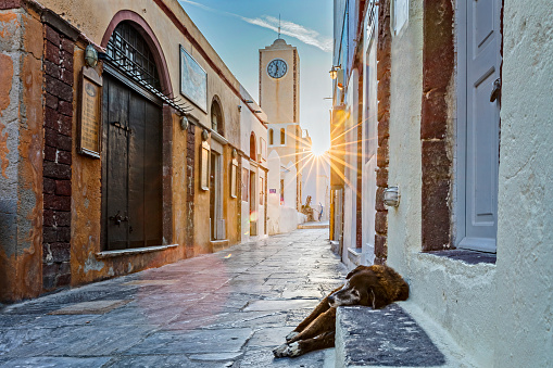 Aegean Sea「Lonesome sleeping dog in Oia - Santorini, Greece」:スマホ壁紙(10)