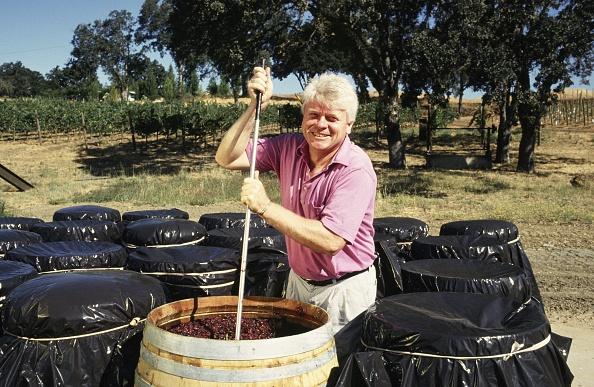 Organic「Mendocino County Pinot Noir Wine」:写真・画像(18)[壁紙.com]