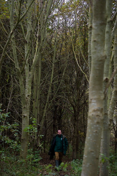 Trust「Woodland Trust Inspect Trees For Signs Of Ash Dieback Disease」:写真・画像(17)[壁紙.com]
