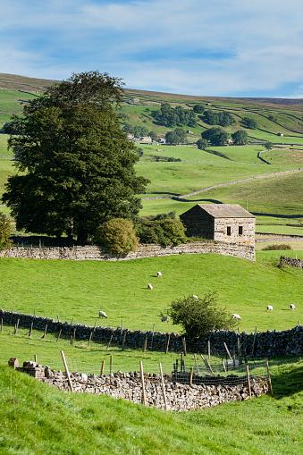 晴れている「Wensleydale Landscape, near Hawes, Yorkshire  UK」:スマホ壁紙(15)