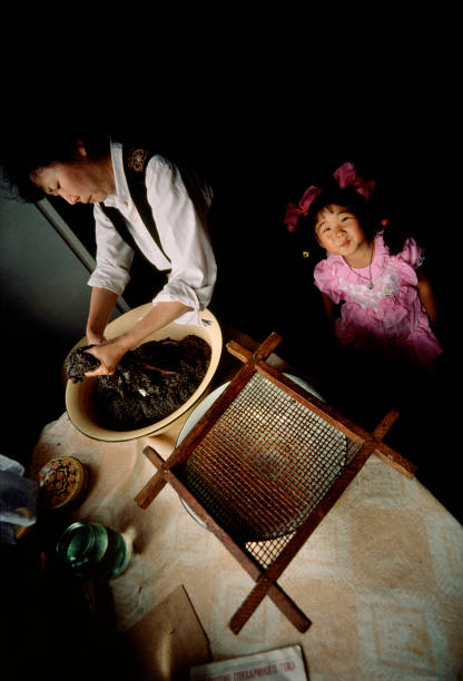 Domestic Kitchen「Fishing For Sturgeon」:写真・画像(8)[壁紙.com]