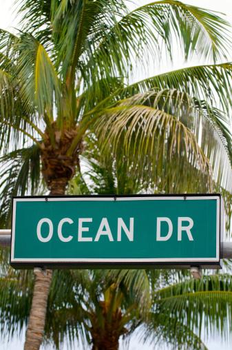 Miami Beach「South を Miami Beach Ocean Drive の標識のヤシの木」:スマホ壁紙(8)