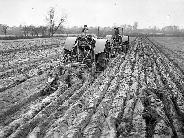 Plowed Field「Ploughing Field」:写真・画像(2)[壁紙.com]