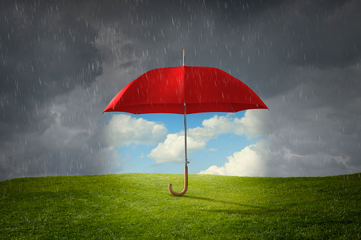 Protection「Red umbrella protecting grass from rain」:スマホ壁紙(1)
