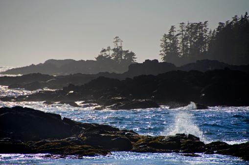 ビーチ「Wild Pacific Trail on  the Vancouver Island coast」:スマホ壁紙(1)