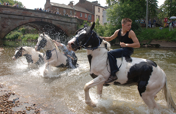 Splashing「Appleby Horse Fair」:写真・画像(17)[壁紙.com]