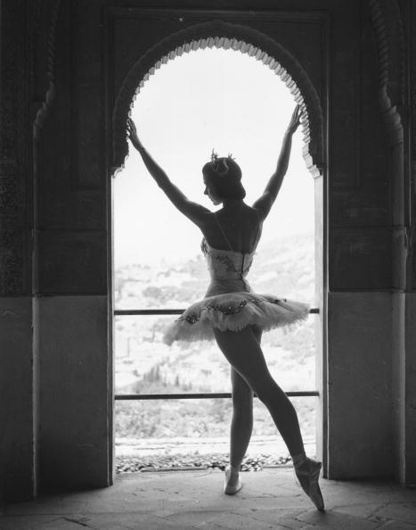 Architectural Feature「Margot Fonteyn」:写真・画像(16)[壁紙.com]
