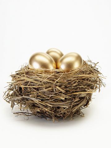 Animal Egg「Golden eggs in bird's nest」:スマホ壁紙(3)