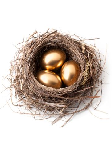 鳥の巣「金の卵の巣ます。」:スマホ壁紙(9)