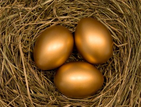 Animal Egg「golden eggs」:スマホ壁紙(0)