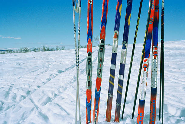Row of Skis in Snow:スマホ壁紙(壁紙.com)