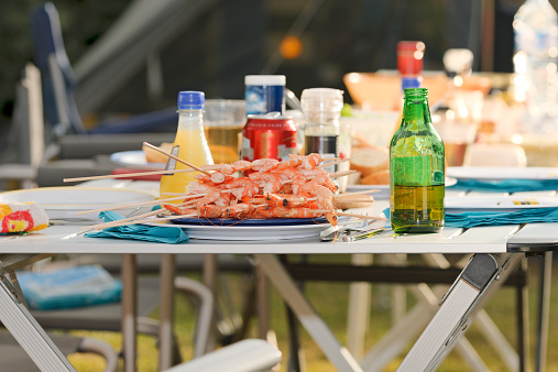 France「Barbecue on a camping ground」:スマホ壁紙(0)