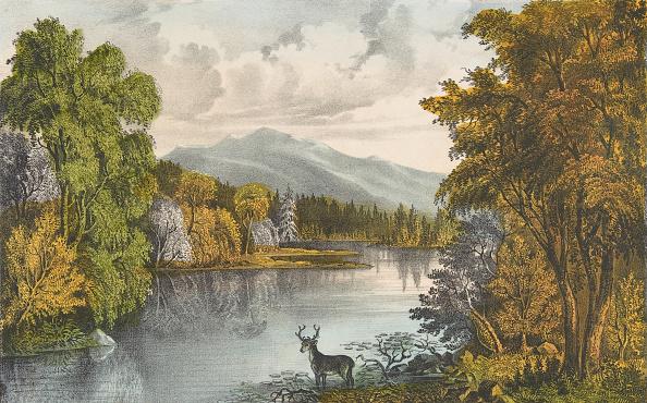 Water's Edge「Moosehead Lake」:写真・画像(13)[壁紙.com]