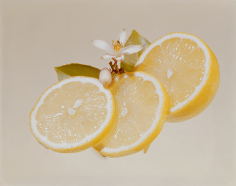 1967「Lemon slices with blossom, close-up」:スマホ壁紙(16)