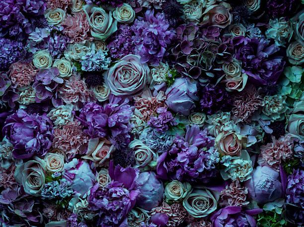 Atmospheric floral arrangement, full frame:スマホ壁紙(壁紙.com)