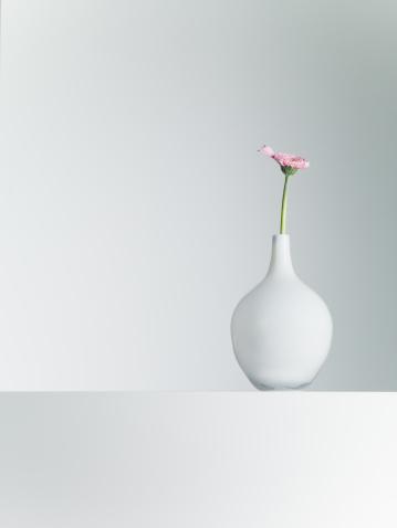 キク科「デイジーの花瓶のテーブル」:スマホ壁紙(19)