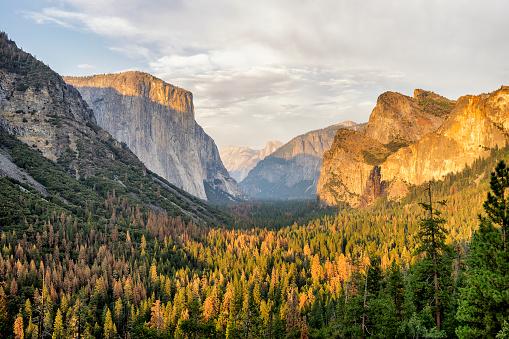 Half Dome「Yosemite View in California」:スマホ壁紙(14)