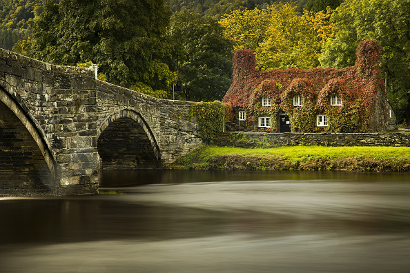 Color Image「Autumn Colours In Wales」:写真・画像(8)[壁紙.com]