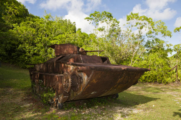 Japanese Tank of II World War, Peleliu Island, Micronesia, Palau:スマホ壁紙(壁紙.com)