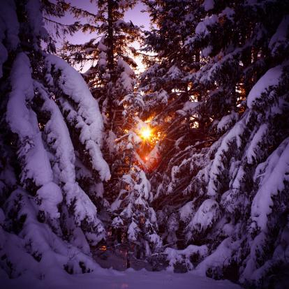 北極「冬季の夕暮れ」:スマホ壁紙(13)