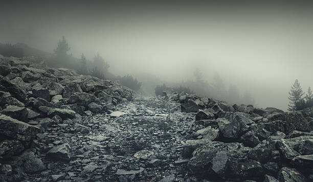 Misty road in mountains:スマホ壁紙(壁紙.com)