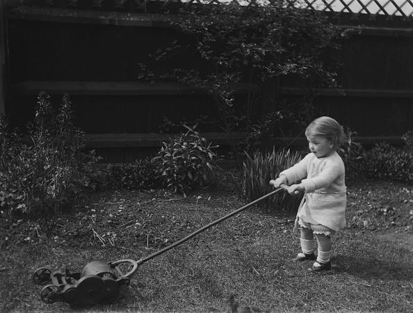 Toddler「Child Pushing Lawn Mower」:写真・画像(6)[壁紙.com]