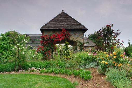 観賞用庭園「植物のガゼボ」:スマホ壁紙(8)
