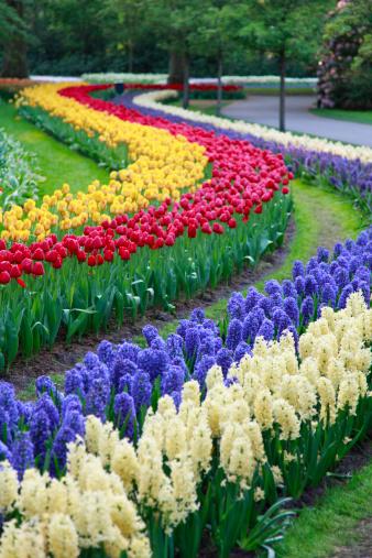 Garden Of Eden - Old Testament「Botanical garden in spring time」:スマホ壁紙(14)