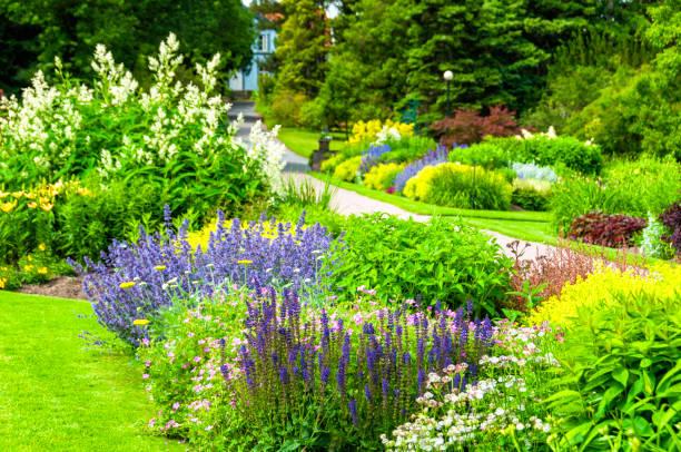 Botanical garden:スマホ壁紙(壁紙.com)