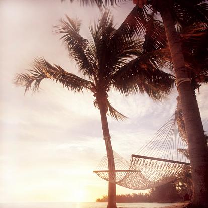 Hammock「Hammock beween two palm trees on beach, sunset」:スマホ壁紙(17)