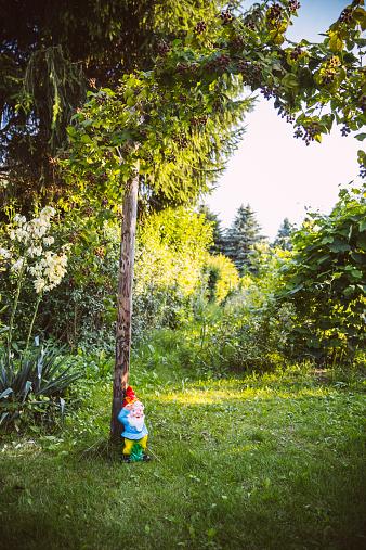 Garden Gnome「Germany, Northrhine Westphalia, Bornheim, Gardengnome under tree」:スマホ壁紙(4)