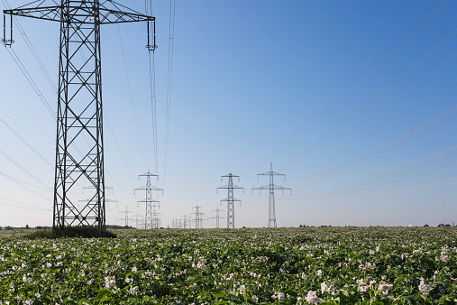 Electricity Pylon「Germany, North Rhine-Westphalia, Pulheim, High voltage power lines and potato field」:スマホ壁紙(10)