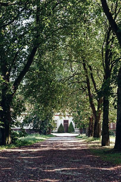 Germany, North Rhine-Westphalia, Alley to farmhouse in Hvixbeck:スマホ壁紙(壁紙.com)