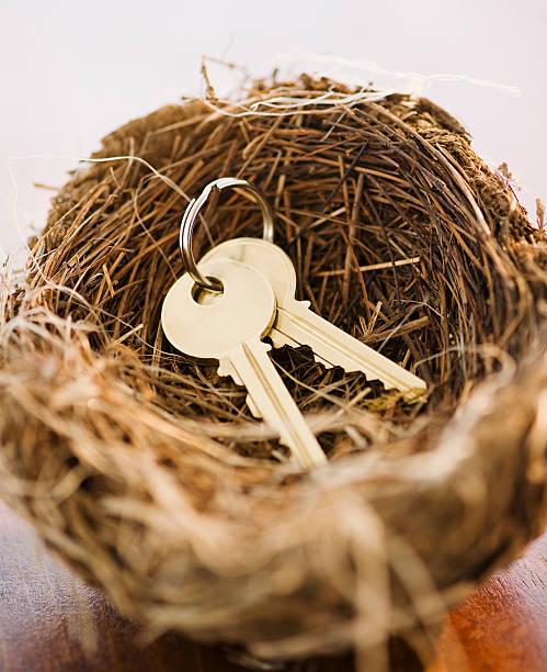 Keys in a bird nest:スマホ壁紙(壁紙.com)