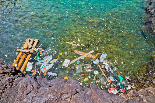 Atlantic Islands「Photo of garbage floating in the shoreline water」:スマホ壁紙(8)