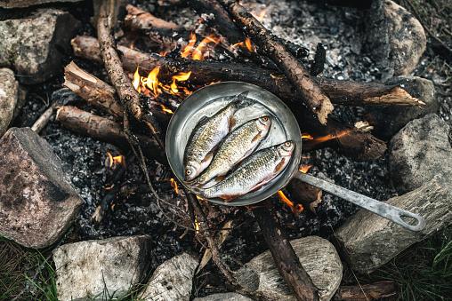コンゴ民主共和国「Rudd frying in a pan at camp fire」:スマホ壁紙(4)