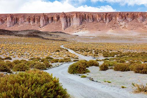 Volcano「Dirt track leading to the Salar de Tara salt flat, located 4,300m altitude in Los Flamencos National Reserve at the Atacama desert, Chile, January 18, 2018」:スマホ壁紙(0)