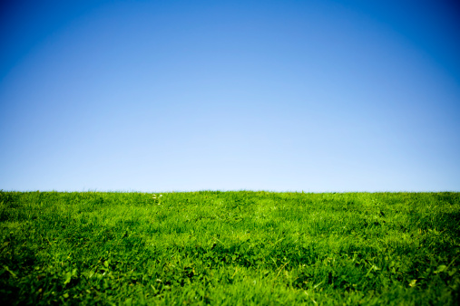 Hill「Green Grass and Blue Sky with Vignetting」:スマホ壁紙(0)