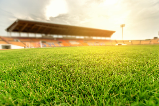 Match - Sport「Green grass in soccer stadium with light flare.」:スマホ壁紙(5)